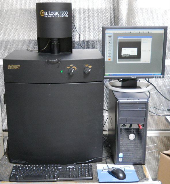 Kodak Gl 1500 Gel Logic Imaging System Scientific
