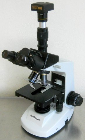 Upright Research Microscope